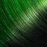 1-OliveGreen_Ombré
